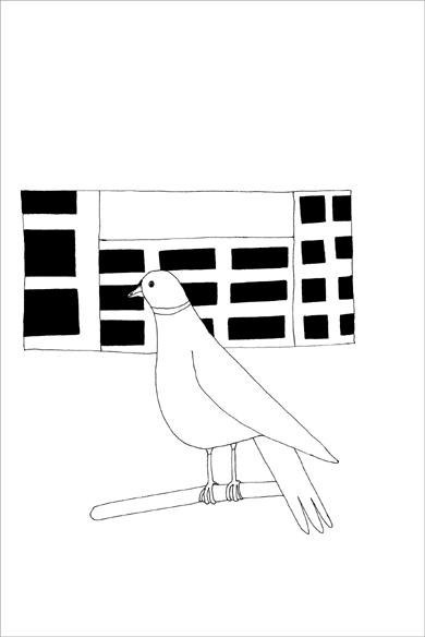 """""""Jeune colombo"""", encre de Chine sur papier, 14 cm x 21 cm, 2009, Paris"""